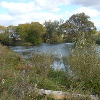 устье реки Турдейка
