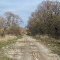 село Милеево. Старая дорога
