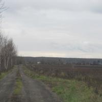 Дорога в деревню