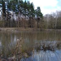 На реке Псёл в начале зимы
