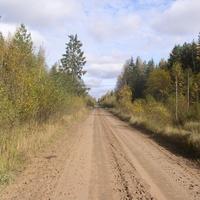 дорога в Назарьино (2008  год)