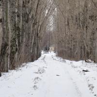 Дорога от шлюзов