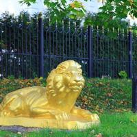 Золотой Лев в Сапронове