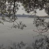 Почапинський ставок