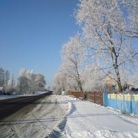 Полесская улица