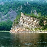 В пойме расположены многочисленные озера. .  В нижнем течении Алдан дробится на ряд...
