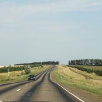 Дорога в Сарапул