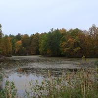 Осенний пруд2