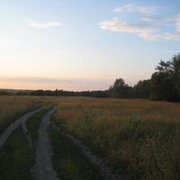 Дорога к реке Усманка