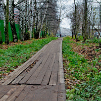 Тротуар на проспекте Новгородском