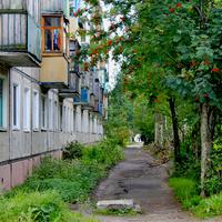 Улица Воронина