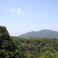Джорджтаун. Вид с высоты из ботанического парка.
