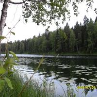 г. Мирный, озеро Плесцы.