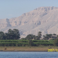 Жизнь и смерть на Ниле