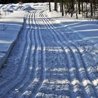 Лыжни проложены