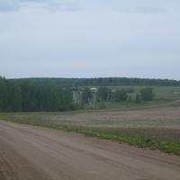 Дорога,дорога в родную деревню