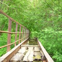 Мост через Коломенку.