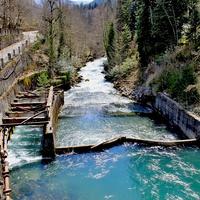 Река Юпшара, вытекающая из озера Рица