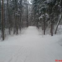 Зимний парк, верхняя аллея