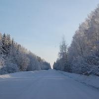 Дорога из Вотчины в Санчурск