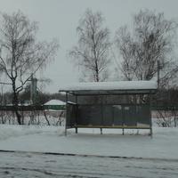"Автобусная остановка ""Станция Непецино"""