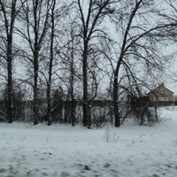 За деревьями - деревня