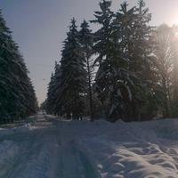 Одна з вулиць с. Завадівка взимку.