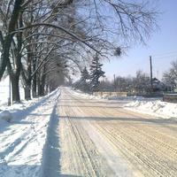 с. Завадівка, вулиця Шевченка.