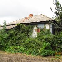 Заросший дом