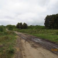Дорога через опустевшую деревню