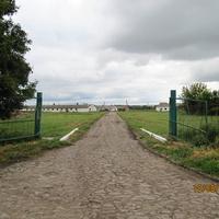Михайловский племзавод, ферма племенного молодняка ВРХ