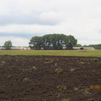 Байрак, ферма