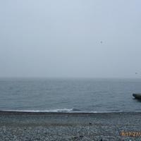 Утро у моря.Апрель