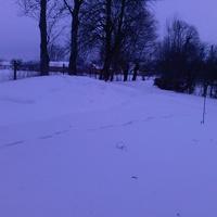 Сурова зима