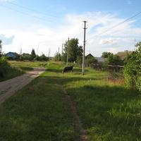 Окраина посёлка