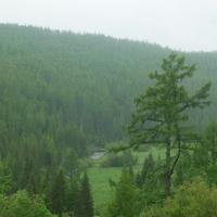 Вид в долину Чёрной речки