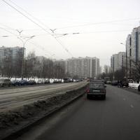 Таллинская улица