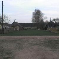 Д. Радовня