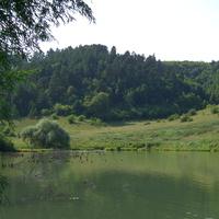 Озеро с Подлесное