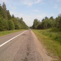 Дорога в Скоморохово(переславского района)