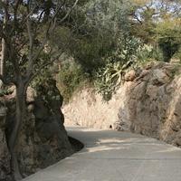 Дорога в парке Гуэль