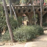 Уголок в парке Гуэль