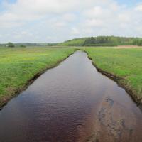 Дубно, река Должанка