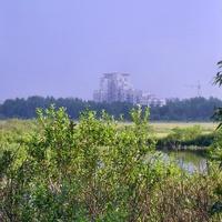 Вид на Сестрорецк с болота