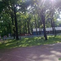 Детский оздоровительный лагерь Солнечный
