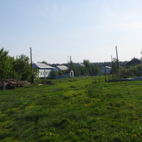 Новогольское ул.Лесная (Мишовка)
