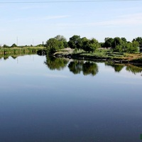 Река Цимла