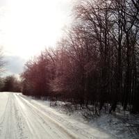 Дорога на Буду взимку
