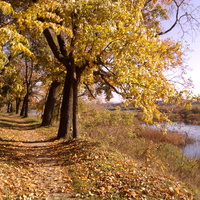 Осенью в парке на берегу р. Великой