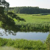 річка Пляшева